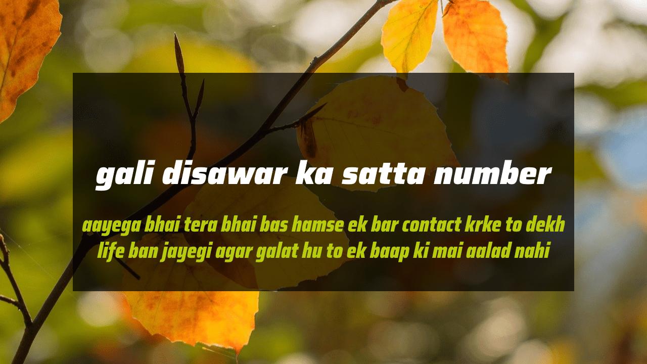 gali-disawar-ka-satta-number